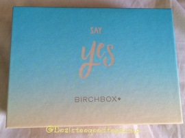 Birchbox June 2015 Say Yes2