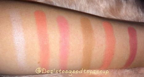 paulas-choice-brush-it-on-contour-palette-5